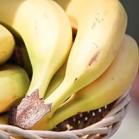 Banana (EX)