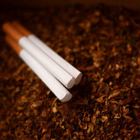 RY4 Tobacco (EX)