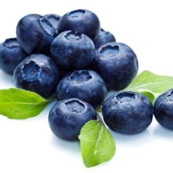 Blueberry Extra (TDA)