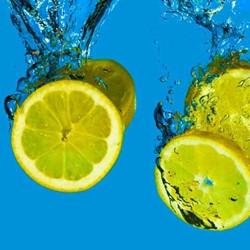 Citrus Punch (TDA)
