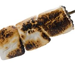 Toasted Marshmallow (TDA)