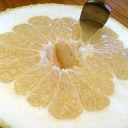 White Grapefruit (IW)