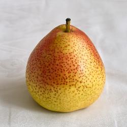 Pear (IW)