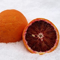 Blood Orange (SC)