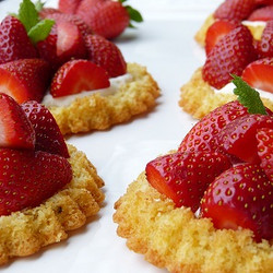 Strawberry Shortcake (TP)