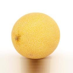 Melon (LQ)
