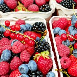 Fruit (NV)
