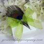 Sheer Wedding Favor Ribbon - Peacock Feather