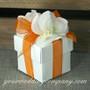 Sheer Wedding Favor Ribbon - Wedding Favor