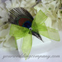 Glossy White Wedding Favor Box with a Peacock Feather