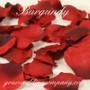 Burgundy Silk Rose Petals (Two Tone)