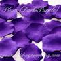 Plum (Dark Purple) Silk Rose Petals