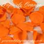 Popsicle Orange Rose Petals