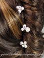 Pearl & Rhinestone Bridal Hairpins - Bridal Accessory