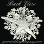 Large Starfish & Pearl Brooch - Back View