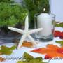 Large Finger Starfish - Beach Wedding Centerpiece