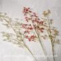 Seed-Bead Sprays