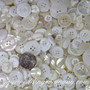 Contemporary Bulk White & Ivory Buttons