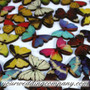 Wooden Butterfly Button Accents