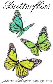 Butterfly Wedding Motif