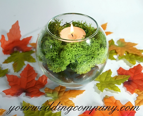 Spanish Moss Vase Filler