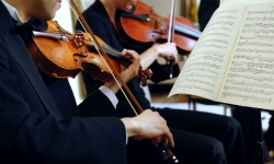 Violinists at the Wedding Reception