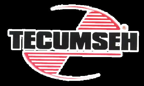 Tecumseh OEM High Speed Bowl Nut - 640015