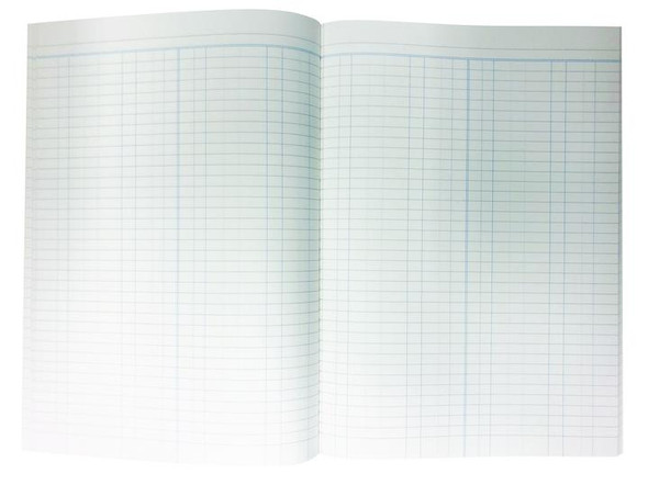Account Book 'A60' Series Double Ledger