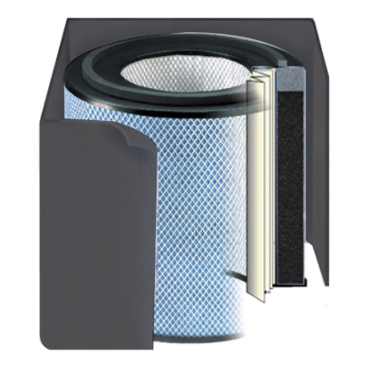 Replacement Filter - Black