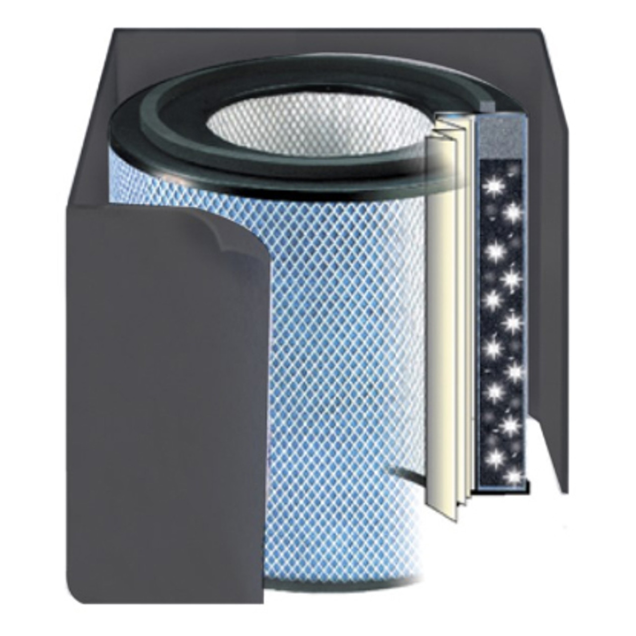 Replacement Filter for HealthMate Plus