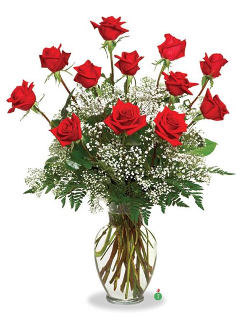 A Dozen Deluxe Roses