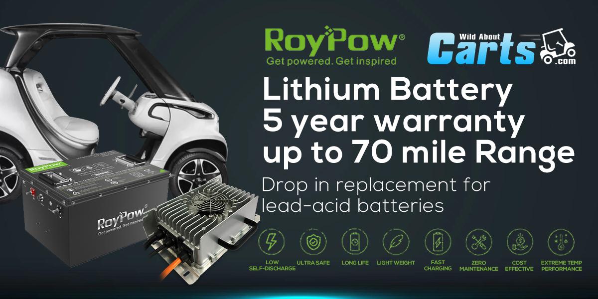 roypow-1-.jpg