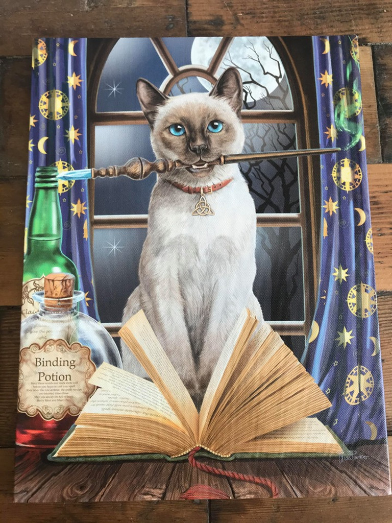 """""""Hocus Pocus"""" Cat and Wand Canvas By Lisa Parker 19 x 25CM"""