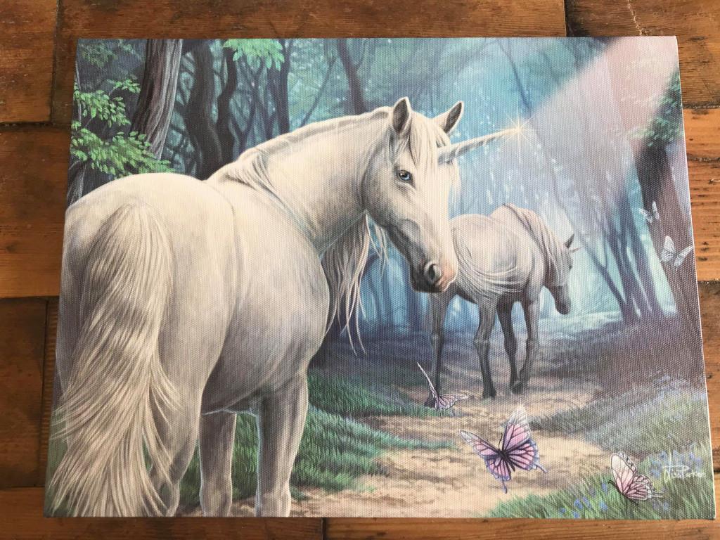 """The Journey Home"" Unicorn Canvas By Lisa Parker 19 x 25CM"