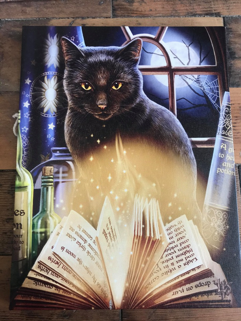 """""""Bewitched"""" Black Cat Canvas By Lisa Parker 19 x 25CM"""