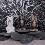 Wise Wolves hear no evil see no evil speak no evil figures at Cerys' Closet