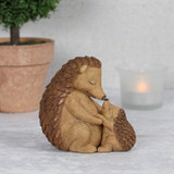 Hedgehog Happy hoglet