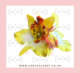 Double Lily Hair Flowers with Crocodile Clip - Sunshine Yellow