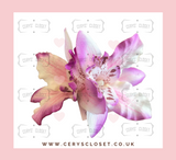 Double Lily Hair Flowers with Crocodile Clip - Light Purple