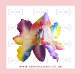 Double Lily Hair Flowers with Crocodile Clip - Multi Colour Rainbow