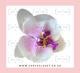 SINGLE FLOWER HAIR ORCHID WITH CROCODILE CLIP - White and Purple