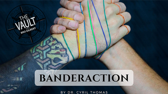 The Vault - Banderaction  (Download)