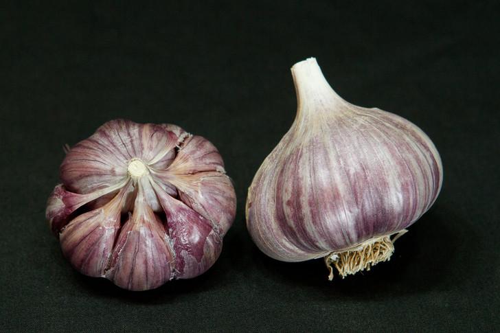 BLANAK Organic Garlic Seed