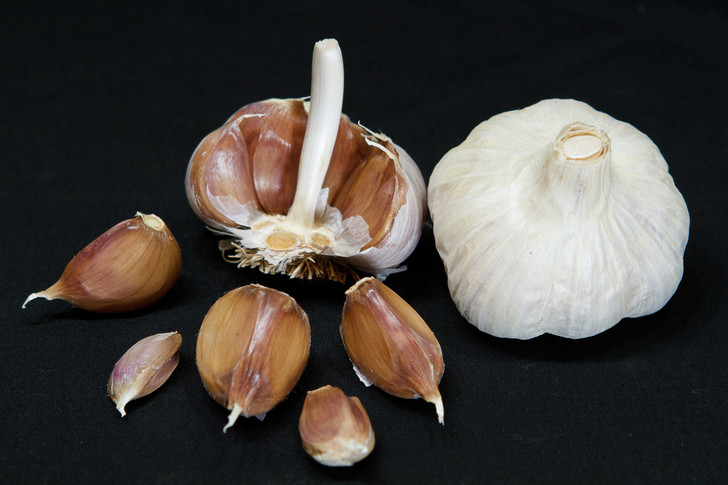 BROWN TEMPEST Organic Garlic Seed