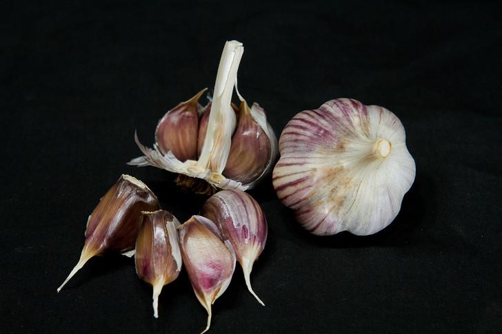 BZENEC Organic Garlic Seed
