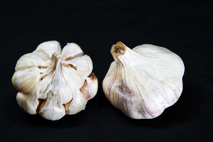 CALIFORNIA EARLY Bulk Organic Garlic Seed