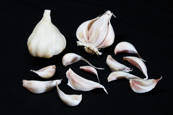 CALIFORNIA SELECT Bulk Organic Garlic Seed