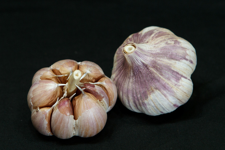 CHENGDU Organic Garlic Seed