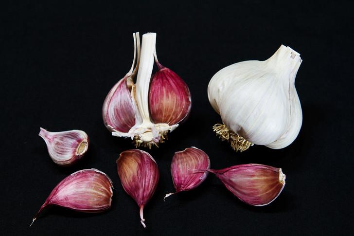 CREOLE RED Organic Garlic Seed