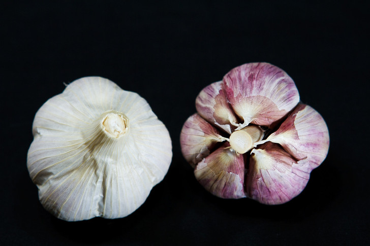 GEORGIAN CRYSTAL Garlic | Filaree Organic Seed Farm